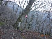 (11) 登山道のテープDSC08181.JPG