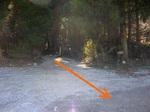 (12)出合から林道を振り返る.jpg