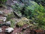 (14) この先石の間を下るDSC07909.JPG