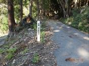 (14) 林道滞迫線DSC08097.JPG
