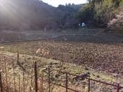 (17) 右の畑と民家DSC06852.JPG