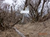 (18) 縦走路分岐DSC08340.JPG
