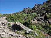 (21) 不安定な岩DSC07797.JPG