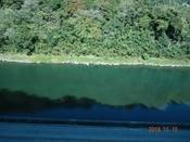 (2) 大野川上流DSC06659.JPG