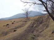 (2) 登山口よりDSC08267.JPG