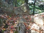 (23) 岩が現れるDSC06583.JPG