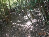(23) 通行止め倒木の前を右上へDSC07965.JPG