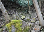 (23)谷中を上る6DSC05435.JPG