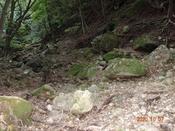 (25) 谷を渡るDSC07912.JPG