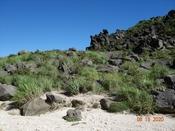 (27) サル岩直下DSC07806.JPG