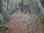 (40) 普通の登山道DSC06466.JPG