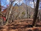 (45) 山頂が近づくDSC06611.JPG