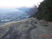 (5) 山桜上DSC08309.JPG