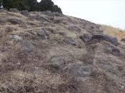 (5) 石切り場?DSC08286.JPG