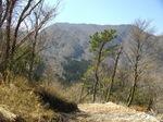 (7)内山が正面に.jpg