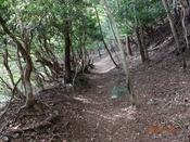 (8) 狸峠への山道-2 DSC07874.JPG