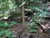 (3) 指山登山口DSC06294.JPG