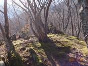 (4) 岩尾根は殺風景DSC08148.JPG