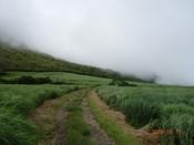 (4) 鳴子川が近いDSC0632.JPG