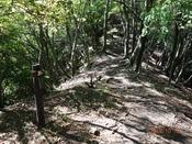 (6) 内山への尾根道DSC06352.JPG