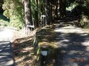 (8) 障子登山口DSC07942.JPG