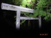 29 乃木神社の?鳥居DSC04144.JPG