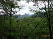 29木の間に見る天狗岩DSC02067.JPG