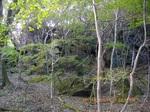 30IMGP6179岩の庭園.JPG