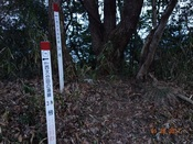 31 巡視路入口DSC03669.JPG