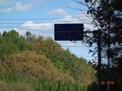 37. 大規模林道標識DSC03129.JPG