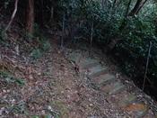 60 階段の始まりDSC03552.JPG