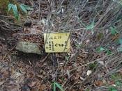 61.ささやかな標識DSC01402.JPG
