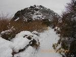 61 梯子場を登る登山者.jpg